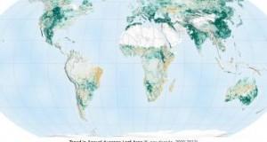 El trabajo de la NASA arrojó que actualmente la Tierra es más verde